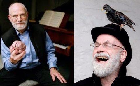 Pratchett-Sacks